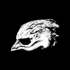 Legend-Of-The-Seagullmen–Legend-Of-The-Seagullmen–300